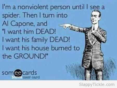 non-violent-person